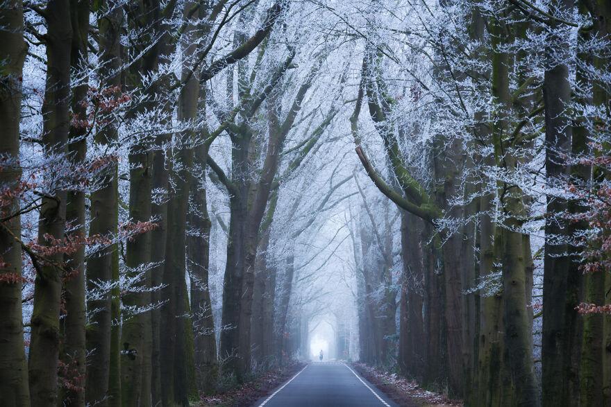 Albert Dros Netherlands Roads