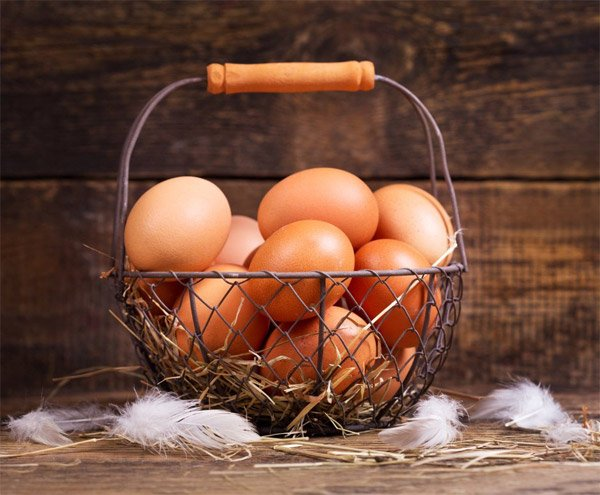 Eggs To Make Protein Rich Breakfast for Weight Loss Success