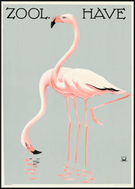 Zoologisk have - Flamingoer - Palle Wennerwald