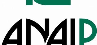 La Asociación Nacional de Industriales del Plástico (ANAIP) encarga a Integra su proyecto de Reingeniería TIC