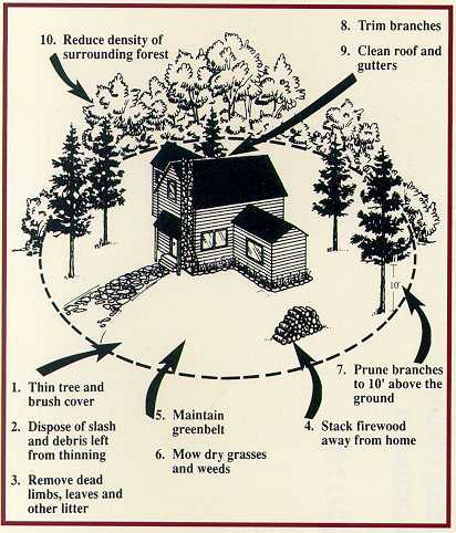 Wildfire preparedness