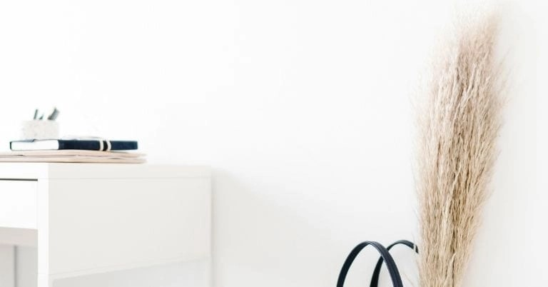 Online Business Ideas For Women
