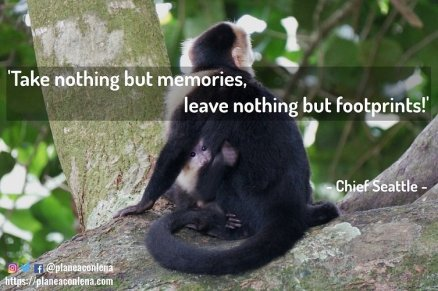'Take nothing but memories, leave nothing but footprints!'- Chief Seattle