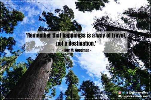 'Recuerda que la felicidad es una forma de viajar, no un destino.' - Roy M. Goodman