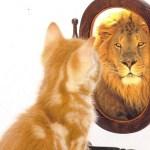Autoestima