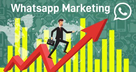 Whatsapp Business Para Marketing