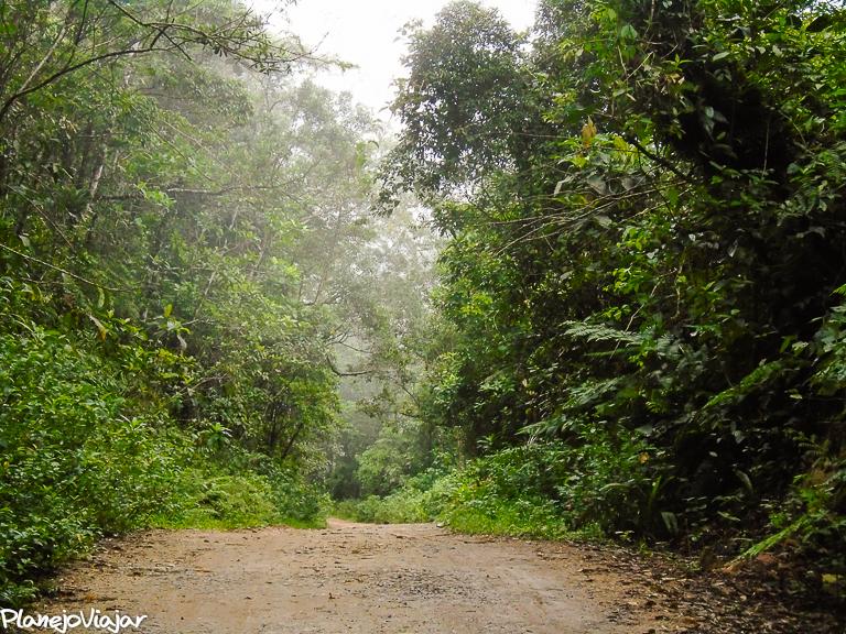 Estrada para Dois Rios num dia de Chuva