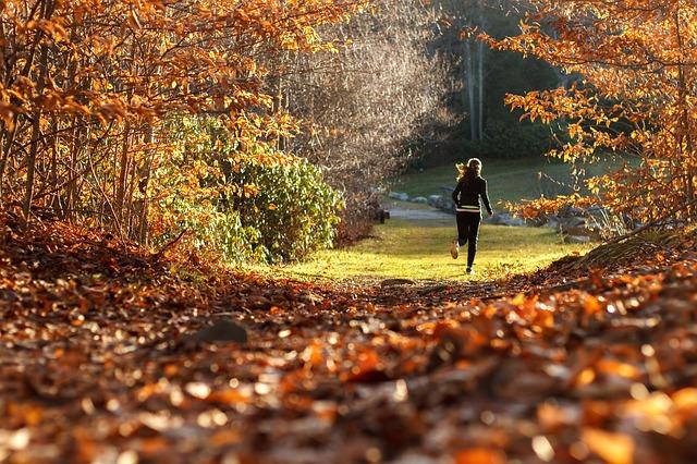 Cómo hacer el entrenamiento de fartlek para corredores de maratón