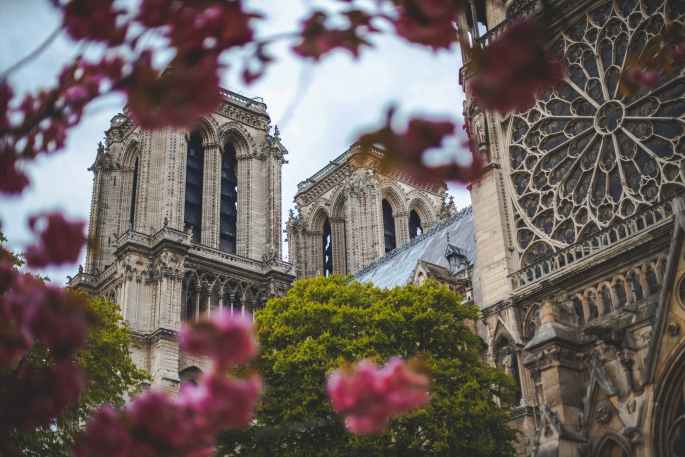 emily in paris real. low angle photo of notre dame