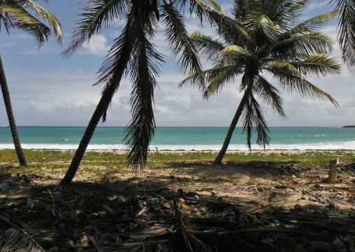 Mon rêve d'après le coronavirus : un voyage en Martinique.