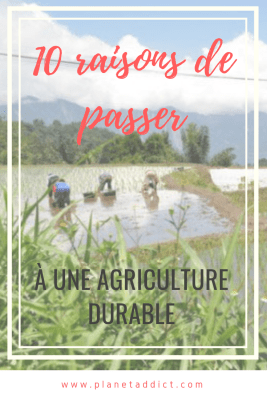 Pinterest-agriculture durable