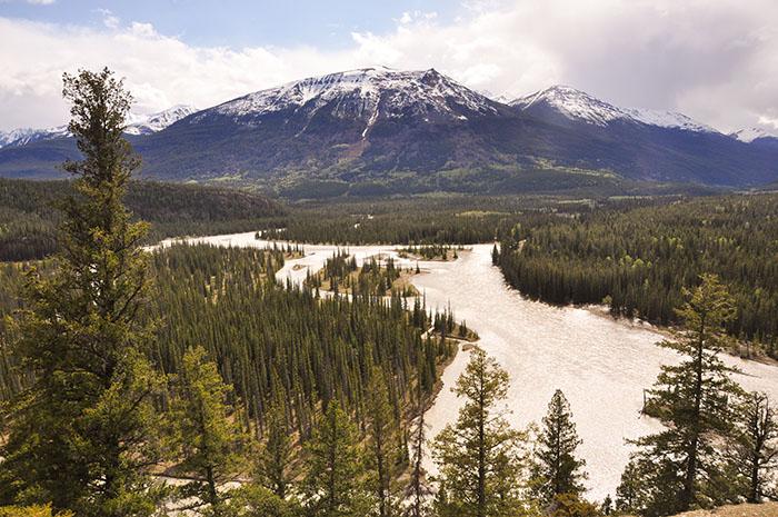 Les rocheuses : Jasper