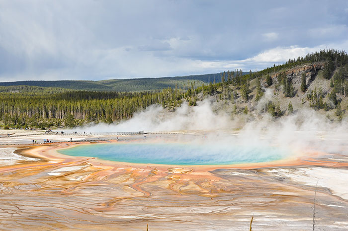 Best of Yellowstone National Park : Geyser, bisons et grizzli !