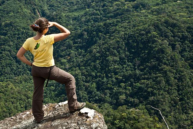 Interview : Préserver les forêts d'Amérique Latine avec Envol Vert