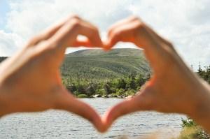 Où voir des orignaux au Canada : la Gaspésie