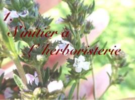 S'initier l'herboristerie