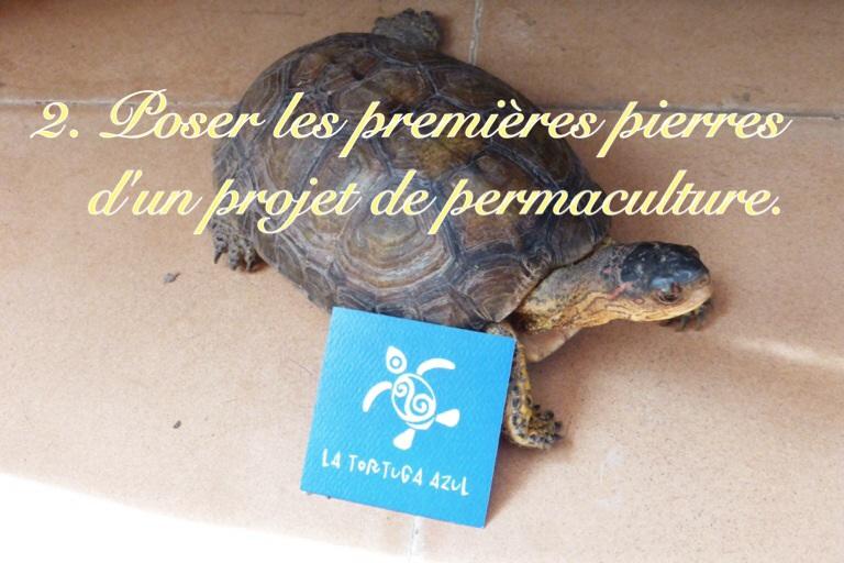 Écovolontariat : Projet de permaculture à Cozumel
