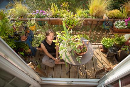 You are currently viewing Interview : l'herboristerie avec Mélanie, de Vert-Citron