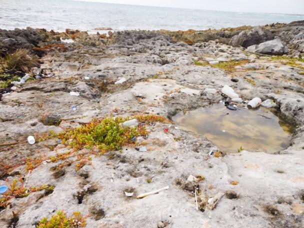 20110101-plage-001