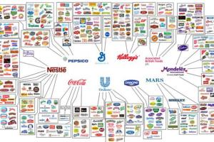 Read more about the article Boycott : les marques que je ne consomme plus