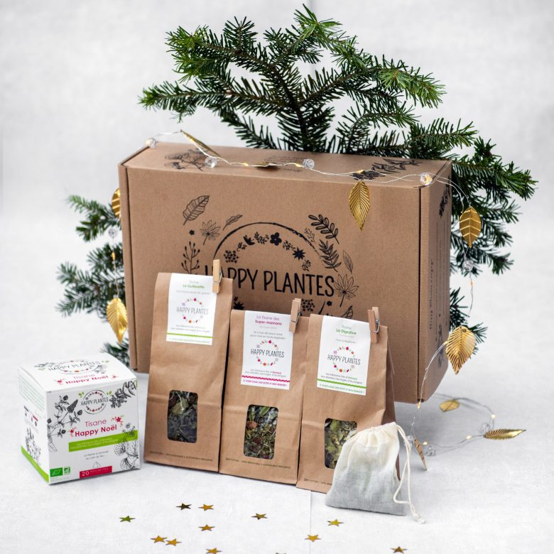 coffre-noel-happy-plantes