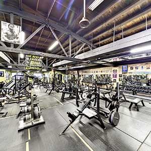 Quads Gym