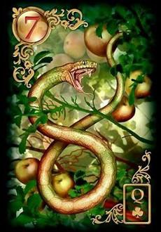 Carta do Baralho Cigano - Cobra ou Serpente 7