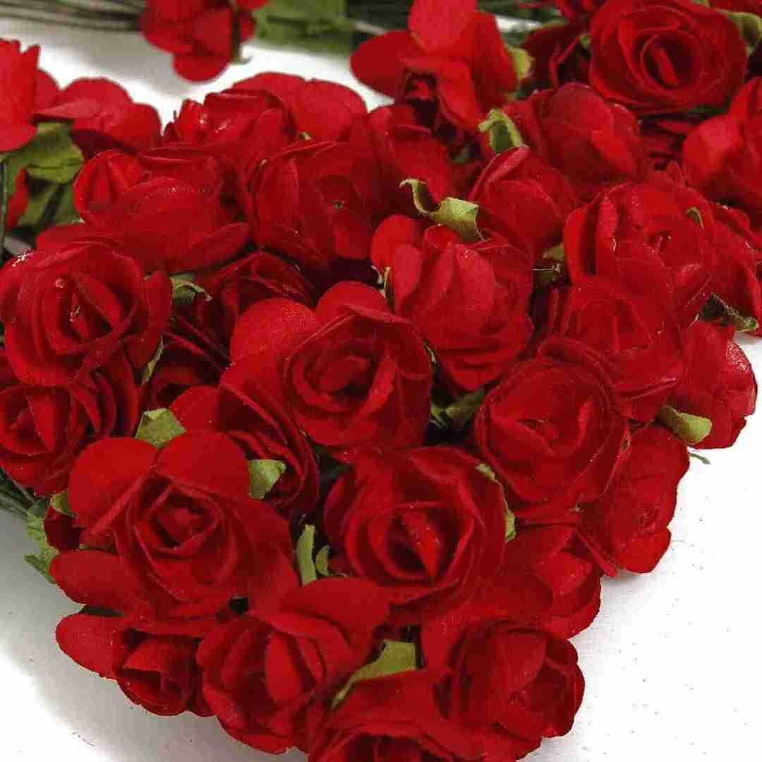 Bouquet de rosas vermelhas da cigana