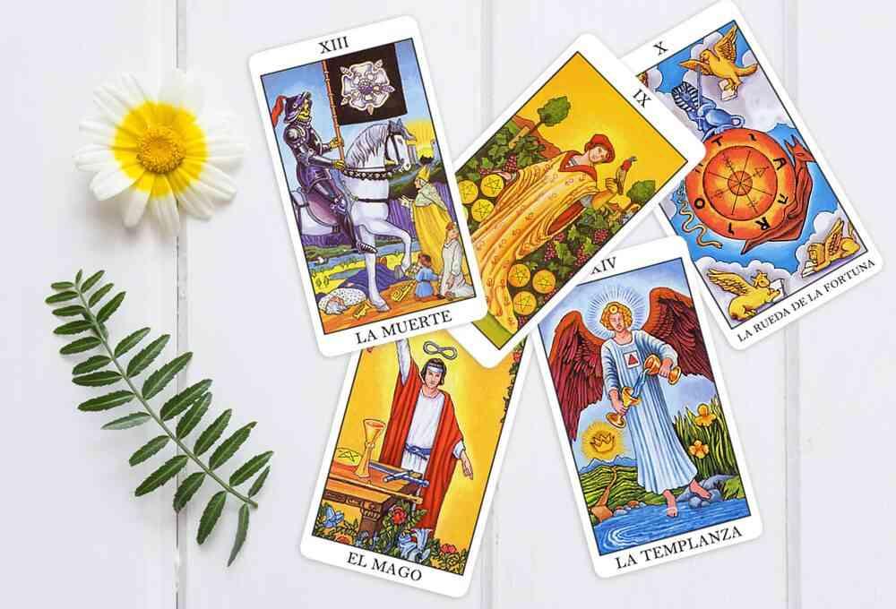 Cartas do Tarot Arcanos Maiores e Menores e flor