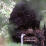 Graban un verdadero Bigfoot en una montaña de Utah