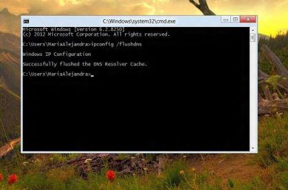 Borrar cache DNS en Windows
