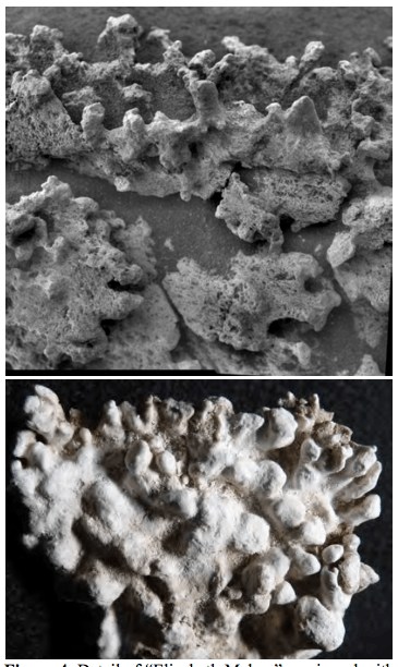 "The ""Elizabeth Mahon"" feature seen by the Microscopic Imager on Spirit (top), compared with columnar sinter from El Tatio (bottom). Both images are about 5 cm across. Image Credit: NASA/JPL-Caltech/School of Earth and Space Exploration, Arizona State University"