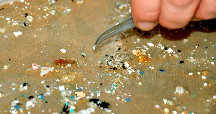 micrplasticos en playas