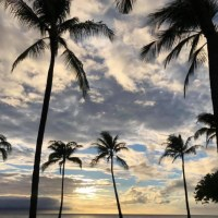 Maui, Hawaii Opportunity- Practice for Sale