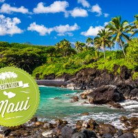 MAUI, HAWAII - HIGH NET PROFIT PRACTICE FOR SALE!
