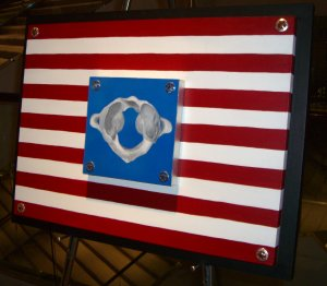 chiropractic art - American flag Atlas vertebrae