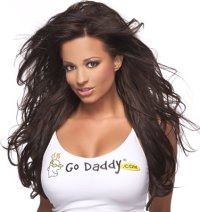 Super Bowl XLI commercials godaddy girl