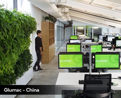 Glumac, Inside - Shanghai