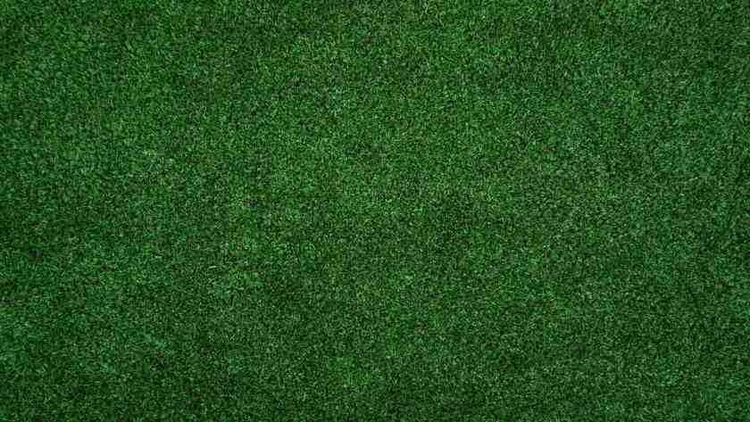 How to play turf