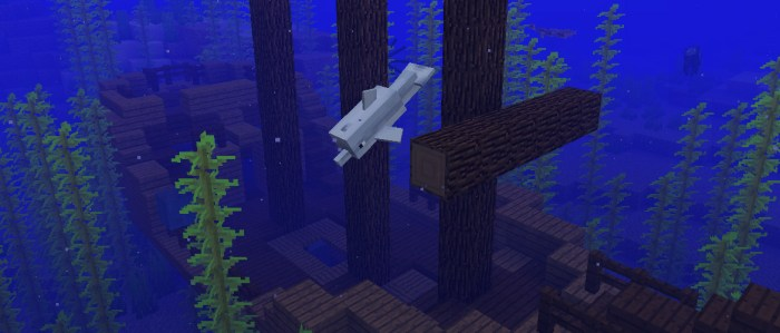 Minecraft Aquatic mise à jour update PS Vita