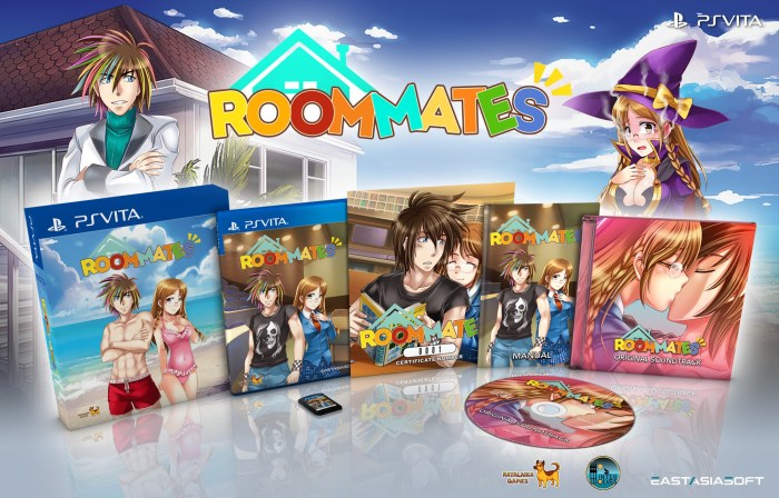 Roommates PS Vita