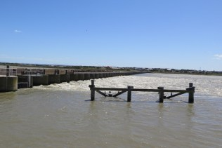 goolwa-barrage