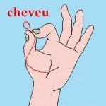 CHEVEU – Cheveu