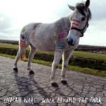 INDIAN WARS – Walk Around The Park
