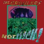 THE GROWLERS – Not. Psych !