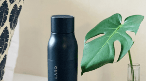 monstera and water bottle