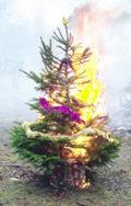 Burnxmastree