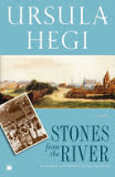 the cover of Stones From the River