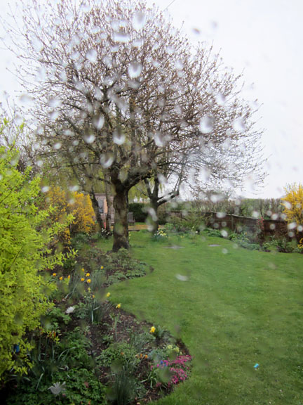 Norfolk garden viewed through a rain spattered window