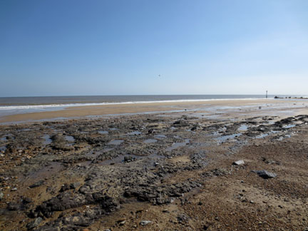 clay exposed by coastal erosion - Norfolk